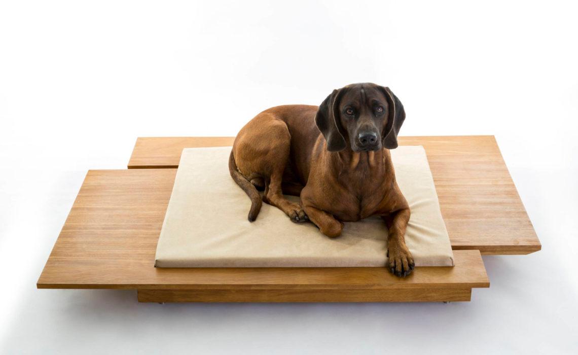 Design for pets
